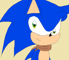 Sonic boom:Sonic by SonicandRacer