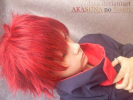 Sasori Cosplay 3 by D3ra
