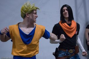 Cartoomics 2009: DBZ 3 by LarsVanDrake