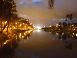 Ala Wai Canal - night + filter by bmah