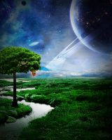 The Tree by Jsiar