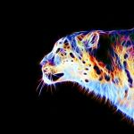 Colored leopard 3 by megaossa