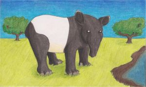 Tapir by the-punk-hippie