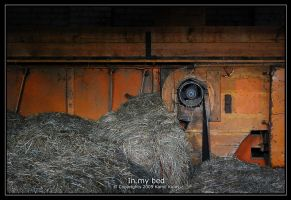 In my bed by qlas