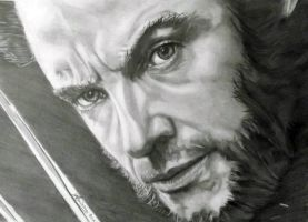 Hugh Jackman as Wolverine by Anita-Sanderson
