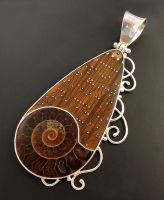 hinged bail ammonite pendant by thebluekraken