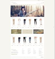 Shopmania - Responsive Ecommerce Theme by alidemirci1