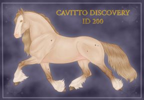 Cavitto Discovery ID 200 by Cariannarz