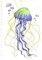Jellyfish sketch by Ka-ou