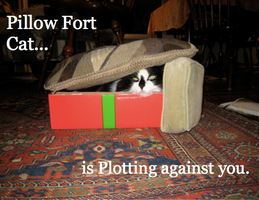 Pillow Fort Cat by burningdreams76