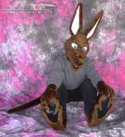 Fursuit by ShadowRoo