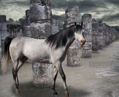 The Stone Pillars by Sincerely-Shazzam