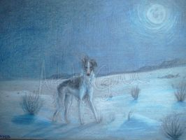Winter Borzoi by InstantCoyote