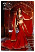 Red Indian Saree gown by Nigelchia