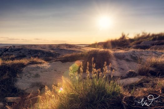 Final Rays of Light by Elenihrivesse