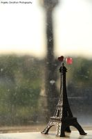 From Paris with Love two by whiterabbit15