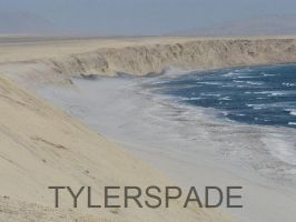 Desert mixing with the sea by Tylerspade