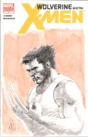 wolverine sketch cover by leinilyu