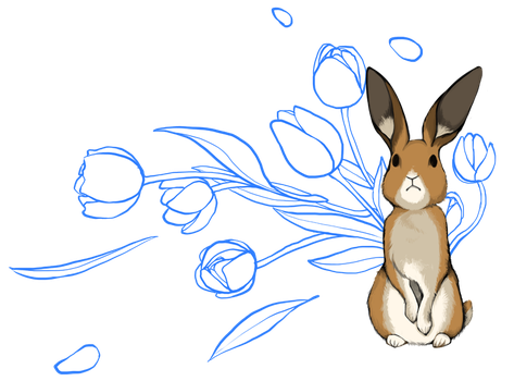 Chinese Zodiac - Hare by Zennore