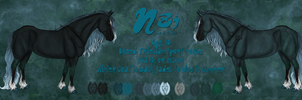 Nzi Reference 2012- Horse by KwehCat