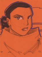 Padme by Tom Hodges by danmartin26