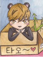 Tao In A Box by chruxsh0rtie