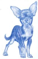 Animal Caricatures No. 6 by SuperStinkWarrior
