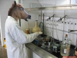 Doing Science by Team-Horse