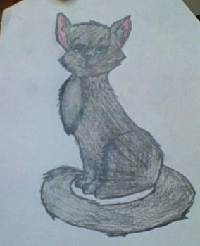 the best cat i have ever drawn by avatarlover14