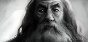 Gandalf The Grey by masterHalfling