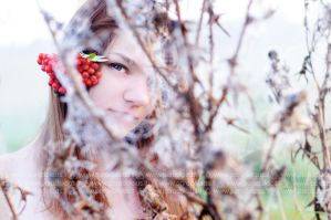Portrait with ashberry by amisiux