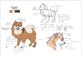 Chi Reference Sheet by NattiKay