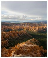 Bryce Canyon by dmlaird