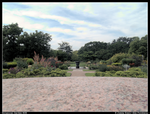 Botanical Garden HDR by LoneDoggy