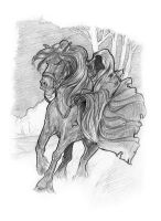 Weekly sketch - Black Rider by AndyIomoon