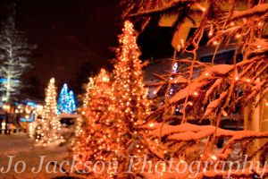 Christmas trees at the Arctic Circle by Britwitch-1981