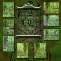 Forest tree set2 wicasa-stock by Wicasa-stock