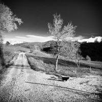 A crossway by rdalpes
