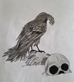 Crow and the Skull by TheTanlor