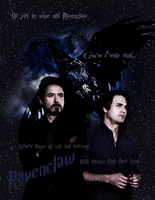 Ravenclaw - Science Bros by PerfectedIdiot