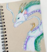 Haku (Spirited Away) by Galactic-sky-99