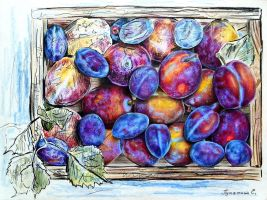 Plums by PutyatinaEkaterina
