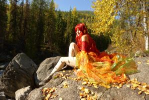 Autumn Has Arrived by nolwen
