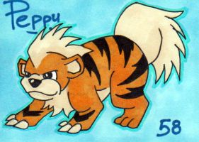 Peppy the Growlithe by peppygrowlithe