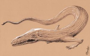 Lindworm by JerryBoucher