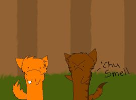 Brambleclaw and Squirrelflight by Sandslash-Trainer