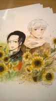 RoChu My sunflower by TiaSunflower