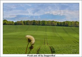 Weeds and All by SnapperRod