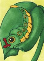 Supernova 2014 ACEO - Caterpie by bittykitty