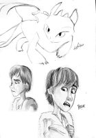 HTTYD sketches by marbri